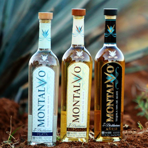 All Three Montalvo Tequilas